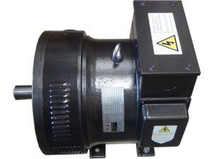 đầu phát điện SA10kw 1 pha D