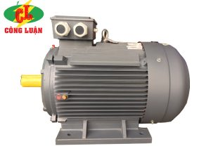 động cơ điện 3 pha qm