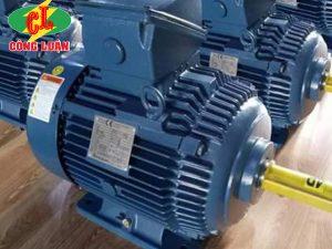 động cơ điện hyosung 3 pha