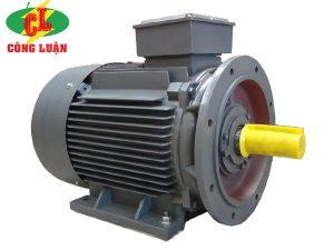 motor điện 3 pha qm