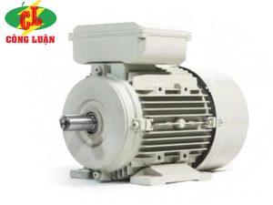 motor điện enertech esc
