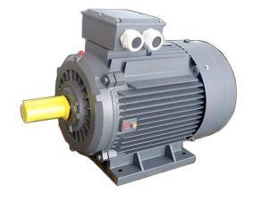 motor điện QM
