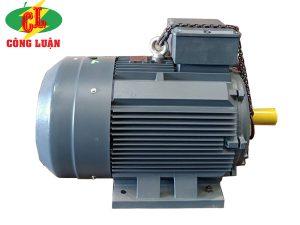 motor điện qm 3 pha B3